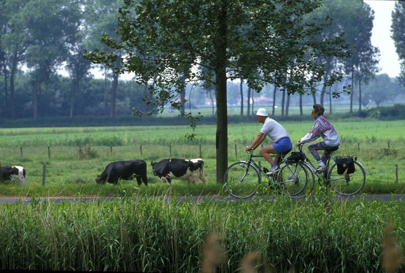 fietsen natuur de buiten derde leeftijd groen bomen weiden